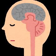脳の視床下部 イメージ画像